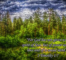 HDR Mountain Forest w/Scripture by StudlyMuffin