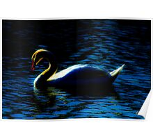 Swan at Peace Poster