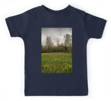 Birches,reeds and kingcups HDR Kids Tee