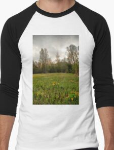 Birches,reeds and kingcups HDR T-Shirt