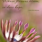 Where flowers bloom by Celeste Mookherjee