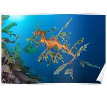 Kelp Creature Poster