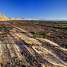 Low Tide at Jalama by Cathy L. Gregg