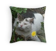 Who Put that There ?? Throw Pillow
