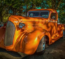 Made in the Shade by Steve Walser