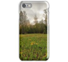 Birches,reeds and kingcups HDR iPhone Case/Skin