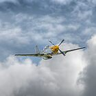 P51 Mustang - Cadillac of the Sky by © Steve H Clark