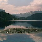 LAKE BLED by Marilyn Grimble