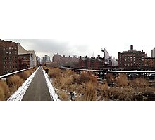 The High Line, NYC Photographic Print