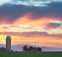 Colorado Farmers Sunset by Bo Insogna