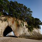 Cathedral Cove by Frank Kletschkus