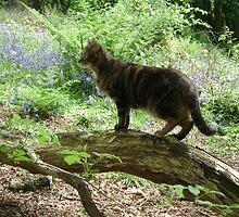 Freya hunting by chelblack
