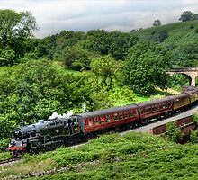 North Yorkshire Moors Railway by © Steve H Clark