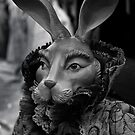 Evil Bunny by Lee LaFontaine