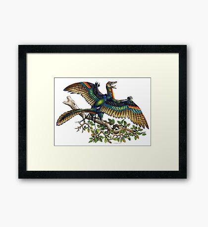 Archaeopteryx Framed Print