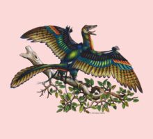 Archaeopteryx Kids Clothes