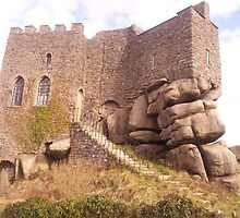 Carn Brea Castle by TheArtist78
