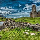 Ardvreck Castle by Fraser Ross