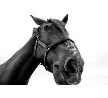 Portrait in Black & White Photographic Print
