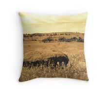 Southward View 3 Throw Pillow