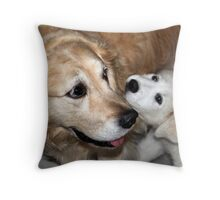 My two dogs..Healey and Zara (puppy) Snuggling together Throw Pillow