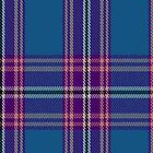 02804 Edinburgh Festival Tartan Fabric Print Iphone Case by Detnecs2013