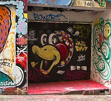 Graffiti, Hosier lane, Melbourne by Pauline Tims