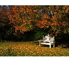 A Beautiful Autumn's Day Photographic Print