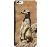 Meerkat Lookout iPhone Case/Skin