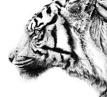 虎 by Junryou
