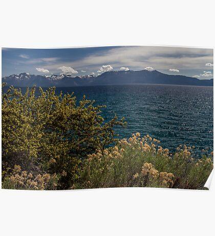 The Wild - Lake Tahoe Poster