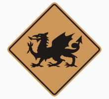 Welsh Dragon Sign by SignShop