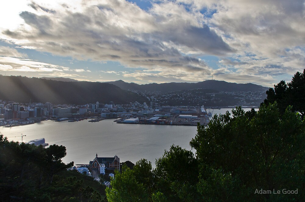 Wellington IX: View from the top by Adam Le Good