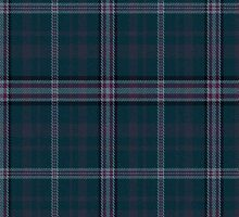 02821 Lake County, Ohio E-fficial Fashion Tartan Fabric Print Iphone Case by Detnecs2013