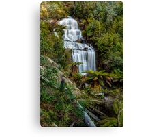 Fainter Falls - Bogong Victoria Canvas Print