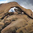Joshua Arch by Paul Grinzi