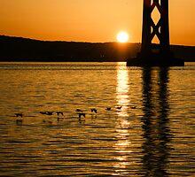 San Francisco Bay Bridge Sunrise by Georgia Mizuleva