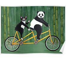 Panda and Cat Bicycle Tandem Poster
