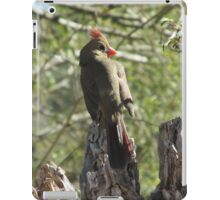 Female Northern Cardinal Glamour Shot iPad Case/Skin