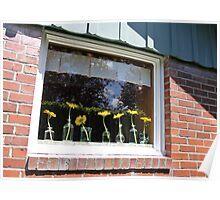 University Place Garden Tour - Home #1 Dancing Gerbera Daisies on a Sill Poster