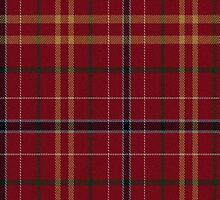 02823 City and County of Chesapeake, Virginia E-fficial Tartan Fabric Print Iphone Case by Detnecs2013
