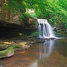 Cauldron Falls by partridge
