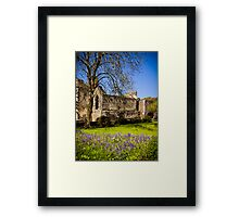 Ruins of the abbey at St Davids Framed Print