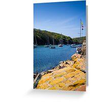 Solva Harbour Greeting Card