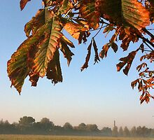 Autumn on Stourbridge Common, Cambridge by Revd Andy Barton