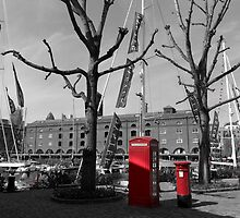 St Katherine's Dock by DavidHornchurch