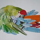 Macaw arranging his feathers by Ruud van Koningsbrugge