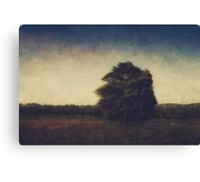 I think of you and I let it go Canvas Print