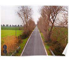 Road in the countryside Poster