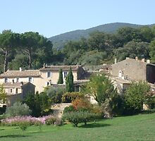 Lourmarin, Provence, France by Angela Gannicott